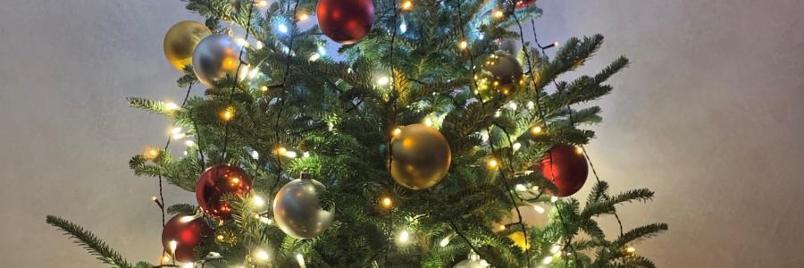 Weihnachts- und Neujahrsgruß 2020